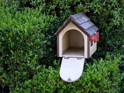 Checklist: Dealing with an Empty Nest